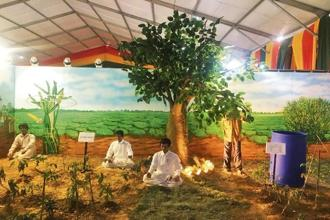 A model on 'yogik' farming displayed at an annual event organized by the agriculture ministry in March. Farmers will be eligible for an assistance of Rs48,700 per hectare for a three-year period for adopting these traditional methods of cultivation.