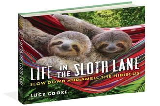 Life in The Sloth Lane—Slow Down And Smell The Hibiscus: By Lucy Cooke, Workman, $12.95 (around Rs850).