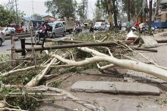Commuters ride past fallen trees and electric poles uprooted after a thunderstorm at GT road in Ghaziabad on Monday. Photo: PTI