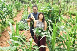 Shameek Chakravarty and Gitanjali Rajamani started by growing organic vegetables on their terrace. Photo: Jithendra M/Mint