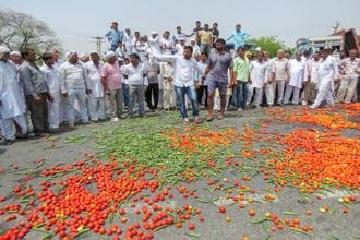 Vegetables lie scattered on a road as a farmer protest entered its third day, in Hisar, on Sunday. Photo: PTI