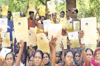 Land documents with joint titles in the Sanakusupadu hamlet in Odisha's Rayagada district. Photos: Arabinda Mahapatra
