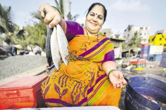 A Koli fisherwoman sells mackerel at Versova. Photos: Aniruddha Chowdhury/Mint