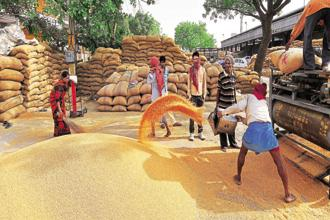 The US has alleged that India had been grossly under-reporting the subsidy it provides for wheat and rice production.
