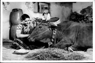 Jaya Bhaduri in a still from 'Gaai Aur Gori'.