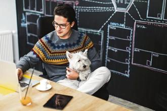 Having office pets around can uplift your spirits. Photo: iStock