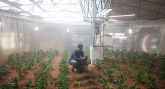 Mark Watney (played by Matt Damon) in his greenhouse in 'The Martian'. Photographs from Alamy