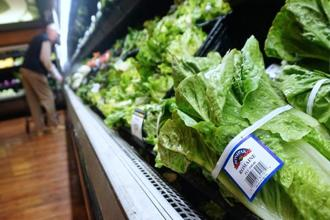 The romaine scare comes in the midst of a turkey-related salmonella outbreak just days ahead of Thanksgiving 2018. Photo: AFP