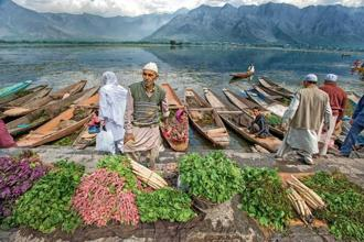 Vegetable vendors line up their produce on the banks of the Dal Lake in Srinagar. Once a gigantic inland lake, the Kashmir Valley's unique hydrology affects livelihoods and cultural practices. Photo: Sankar Sridhar
