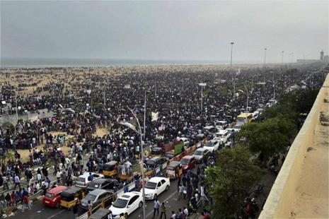 People participate in a protest to lift the ban on Jallikattu at Kamarajar Salai, Marina Beach in Chennai on Friday. Photo: PTI
