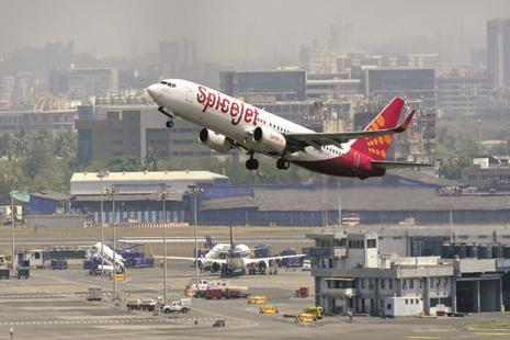 SpiceJet expects profit to rise this year. Photo: Mint