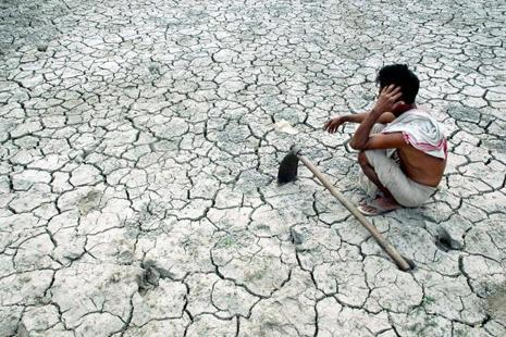 The data shows that in Tamil Nadu—reeling under its worst drought in 140 years—insurance companies collected Rs963 crore as premium while reported claims stood at just Rs22 crore. Photo: AFP