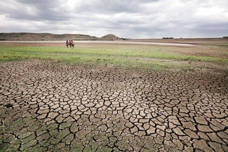 In drought-hit states too, crop insurance payouts are similarly delayed, the data shows. Photo: Hindustan Times