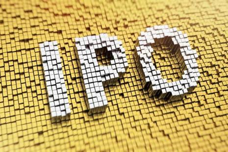 The Apex Frozen Foods IPO aims to raise up to Rs152 crore by issuing shares at a price band of Rs171-175 apiece. Photo: iStock
