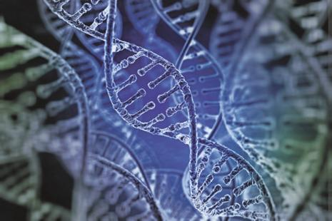 The technique — repeatedly mooted as a worthy candidate for a Nobel — allows scientists to remove and replace a faulty sequence on a strand of DNA with pinpoint precision. Photo: iStock