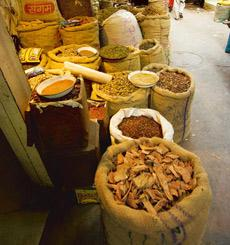 Spicy business: A file photo of a spice market in Delhi. With the 11th five-year Plan, the Northeast is all set to become the new hub for spices.