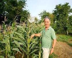 French farmer Roger Langbour poses among corn at his organic farm in Gurgaon district