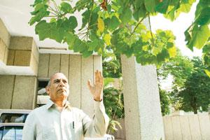 On a mission: The vice-chairman of the Chhattisgarh Planning Board says the jatropha cultivation programme in the state will lead to greater energy security and help improve the living standards of th