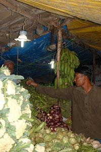 Solar power: A solar powered bulb at a Udupi market. Harish Hande's Selco is committed towards rural solar electrification