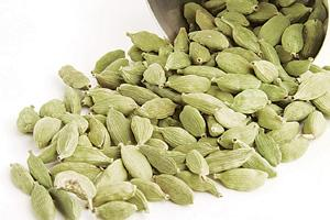 Easy route: India imported 450 tonnes cardamom from Guatemala between April-November 2007, up from 240 tonnes in the year-ago period.