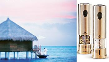 It's a steal: Taj Exotica, Maldives' (left) salt-and-pepper shaker is also available at Sur La Table.