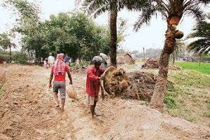 Getting enough? Labourers work under the National Rural Employment Guarantee Act to build a dirt road in Sheikhpur, Bihar.