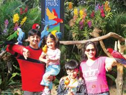 Bonding with feathered friends at Jurong BirdPark