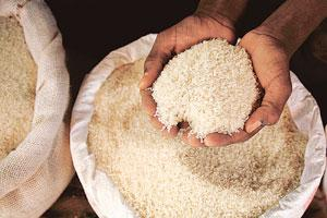 Only a handful: A cut in rice exports by China, India, Egypt and Vietnam has hiked prices, contributing to food riots in Ivory Coast and anti-hoarding campaigns in Pakistan and the Philippines.