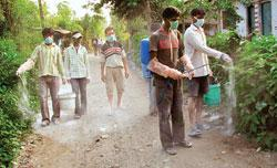 Health workers spray a disinfectant after culling poultry at a village in Siliguri, West Bengal. The World Health Organization has called for more collaborative research into the bird flu virus (Photo
