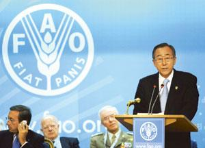 Urgent appeal: UN secretary general Ban Ki-moon addressing the World Food Security Conference in Rome on Tuesday. (Bloomberg)