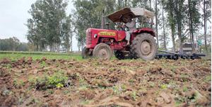 Short of hands: A farmer using a tractor to till his land in Punjab. Hit by a lack of farm workers, states such as Punjab and Andhra Pradesh are promoting mechanization to tackle the problem. Photogra