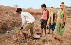 Guaranteed work: An NREGS project in Uttar Pradesh. Neighbouring Bihar has been pilloried by the Union government for providing 22 days of employment per household compared with a national average of