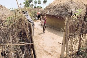 Right to shelter: A village in Andhra Pradesh. Many among India's rural poor are yet to benefit from government housing schemes. Photograph: Harikrishna Katragadda / Mint