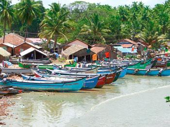 Coastline chronicles: A typical fishing village on the coast. Photograph: Anita Rao Kashi