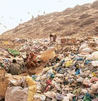 Golden haul:A garbage dumping ground in New Delhi. Photograph: Madhu Kapparath / Mint