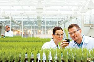 Growth focus: Bayer CropScience scientists. The company expects to launch 10 crop protection compounds globally by 2012.