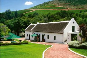 Hic hic holiday: South Africa is known for its vineyards.