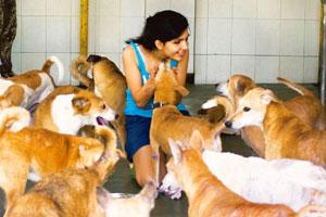 Precious pets: Anushka Malao volunteers at the Welfare for Stray Dogs shed in Mahalaxmi, Mumbai, at least twice a week. Ritam Banerjee / Mint