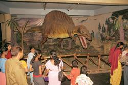 Mysterious disappearance: A file photo of a model of a dinosaur at Visweswaraya Industrial and Technological Museum in Bangalore. Hemant Mishra/ Mint