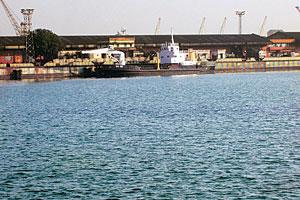 Mired in controversy: A view of the Paradip Port.