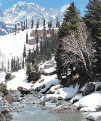 Cold gold:melting snow in the spring feeds the rivers and streams. Rishad Saam Mehta