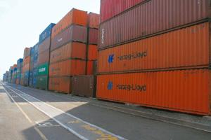 Capacity constraints: Jawaharlal Nehru Port handles 60% of India's container cargo but is restricted by capacity from handling any more. Ashesh Shah / Mint