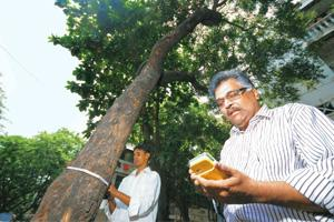 Ambitious plans: Terracon CEO Ramesh Madav (right) uses the GPS device in a tree census. Kedar Bhat / Mint