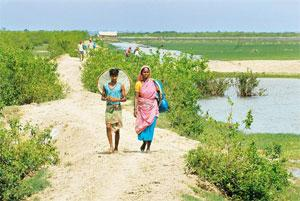 Looking for gains? Settlers on Nayachar island in West Bengal's East Midnapore district. Most of them were reluctant to say how long they have been living on the island since many had likely migrated