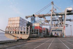 Navigating the crisis: A file photo of Jawaharlal Nehru Port, India's biggest container port. Analysts say SCI's game plan is not clear as container shipping firms are paring capacity across the world