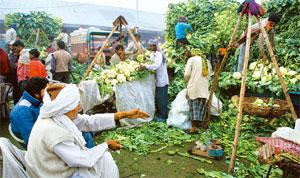 Optimal condition: Fresh farm produce worth an estimated Rs50,000 crore at current prices gets wasted every year in India. Ramesh Pathania / Mint
