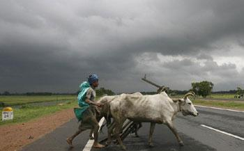A farmer and his bullocks cross a highway against the backdrop of monsoon clouds in Singur, West Bengal, on 15 July 2009. Parth Sanyal / Reuters Photo