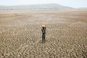 Drought worries: Analysts say a slowing monsoon is one of the major threats to India's growth, considering the high contribution—nearly 18%—of the agricultural sector to the country's gross domestic p
