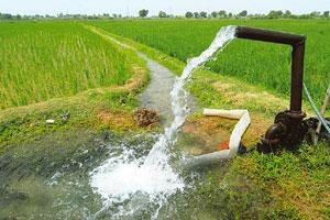 Unequal sharing: While only 58% of the country's groundwater is recharged every year, Rajasthan, Punjab and Haryana are the only three states digging beyond the dynamic zone for groundwater. Ramesh Pa