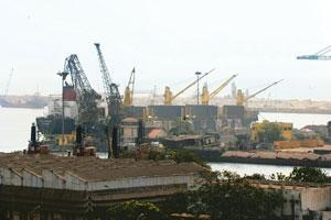 Braving competition: A file photo of a Chennai port. India's coastal trade is reserved for Indian-registered ships. Foreign vessels can be hired when Indian ships are not available, and only with the